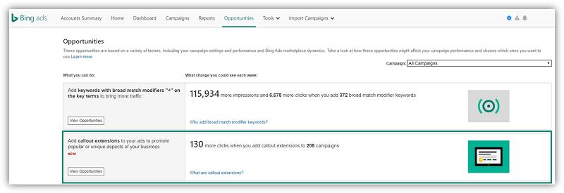 callout extensions screenshot