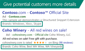 SScreenshot showing Structured Snippet Extensions displayed in search ads.