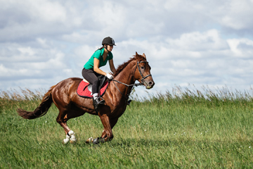 woman riding a horse in a grassy field