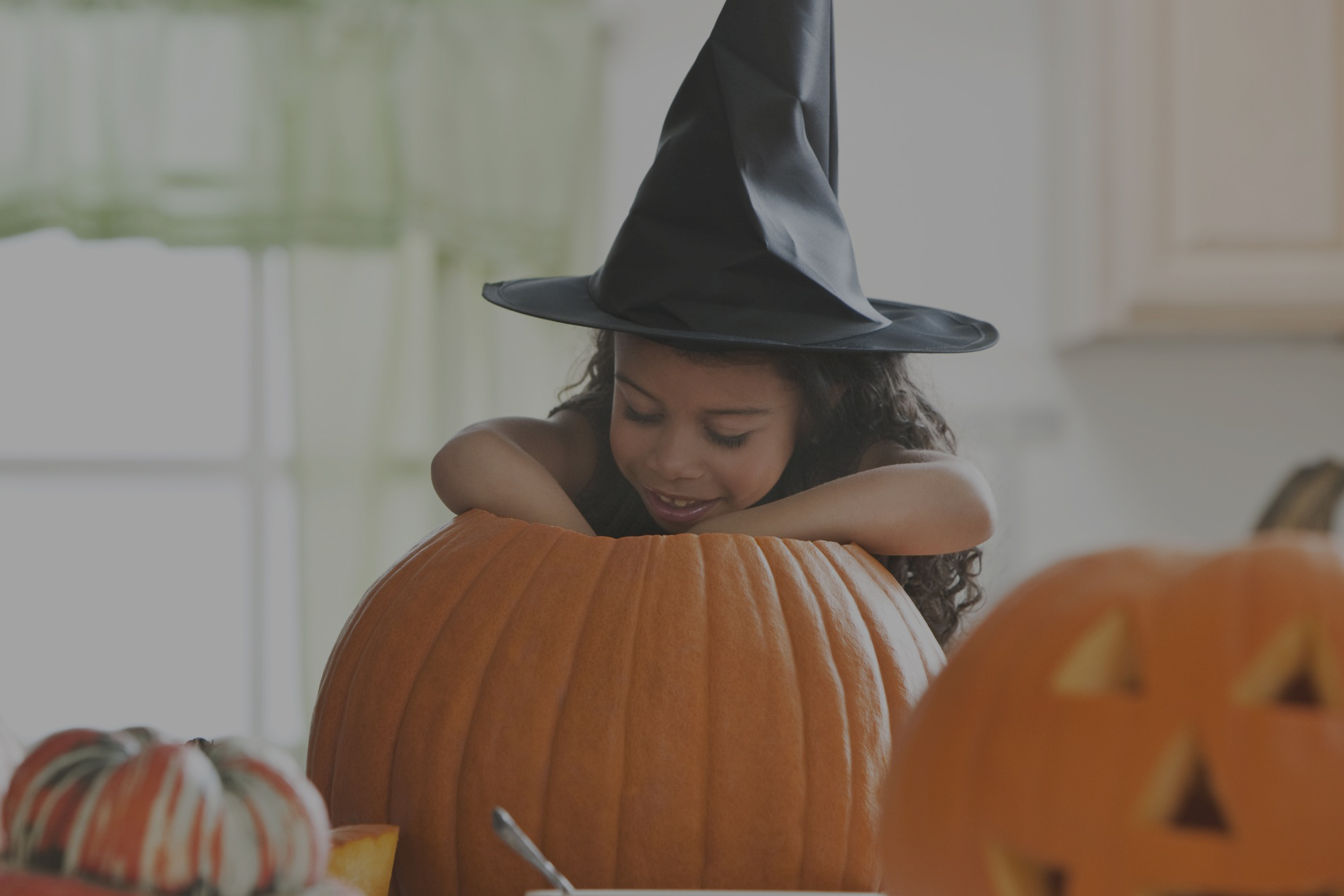 Learn Halloween tricks for search