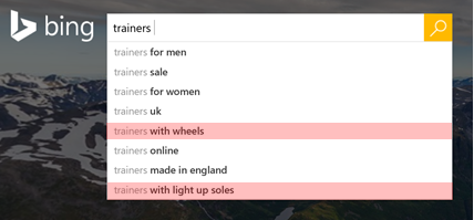Example of Bing Search Queries for Trainers