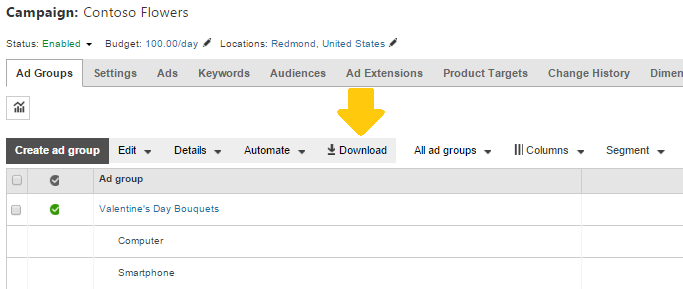 Bing Ads new segmentation inline download function