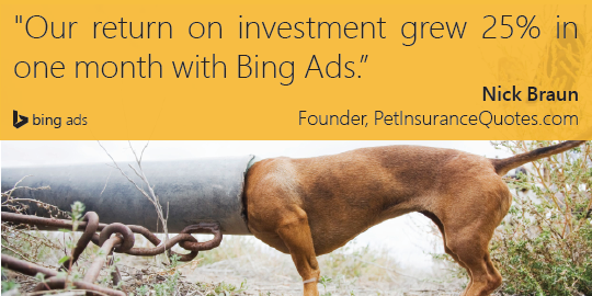 bing ads pet insurance quotes