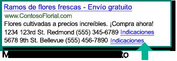Captura de pantalla de Extensiones de ubicación mostradas en un anuncio en buscadores.