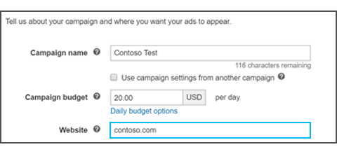 enter website information for dynamic ads campaign